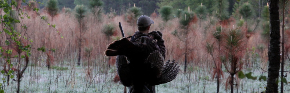 Days like Today get me excited for Turkey Season